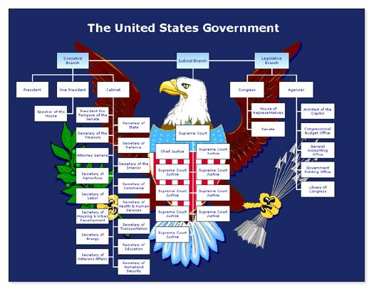 American Government, Branches of the Government and Organization