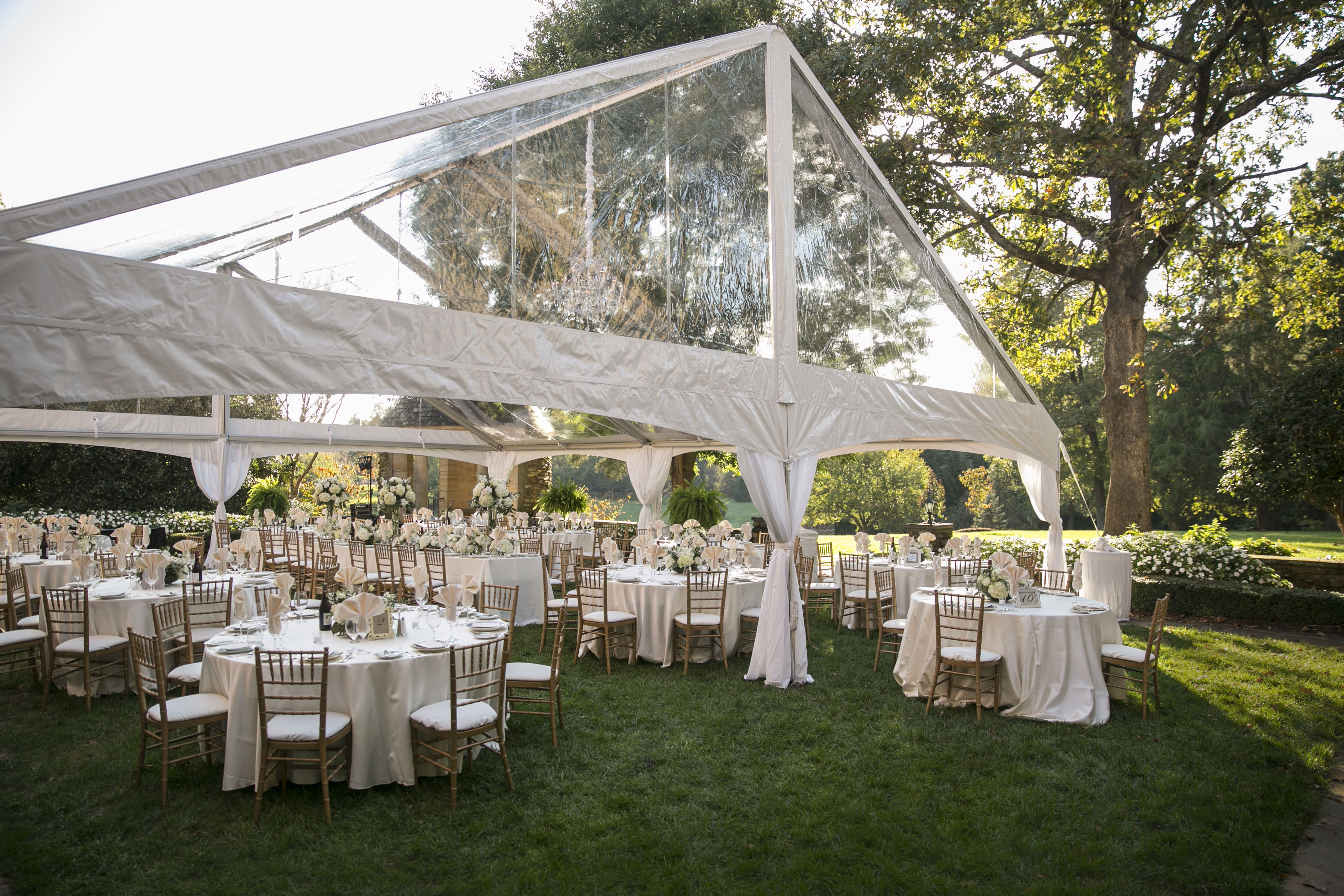 for outdoor reception #chandelier #cleartent #canopytent #tiffanychairs  #tablecloth #rental | Tent rentals, Outdoor wedding, Event rental