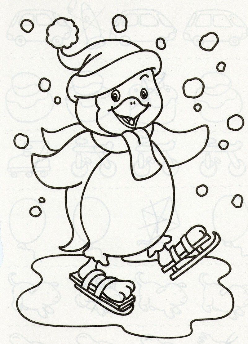 Coloriage animaux sport hiver fotoliaa s le grand nord - Coloriage hivers ...