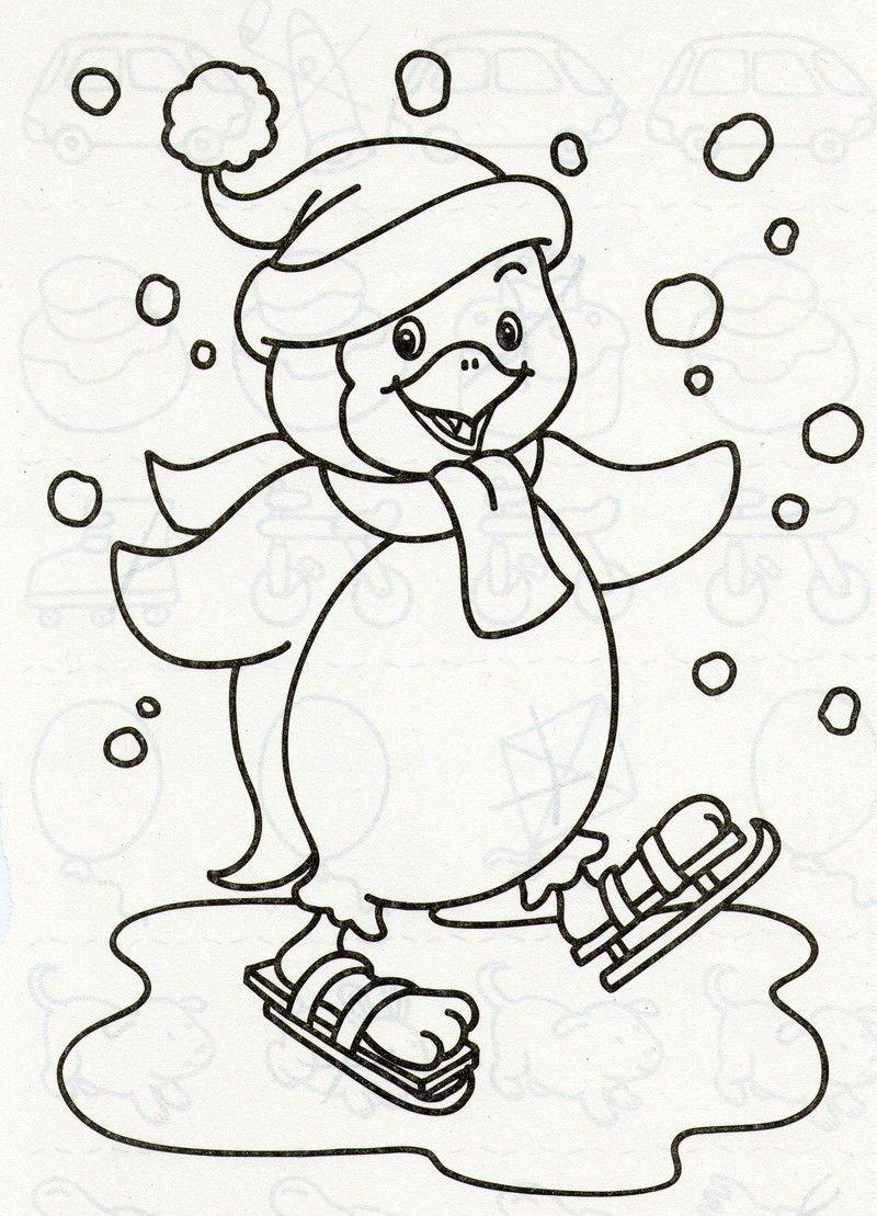 Coloriage animaux sport hiver - Fotoliaa  Coloriage hiver