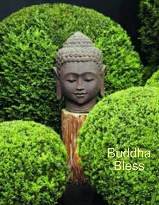 Pin by Sally Pugh on Buddha gardens | Pinterest | Buddha, Buddha ...