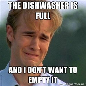 the dishwasher is full and i dont want to empty it