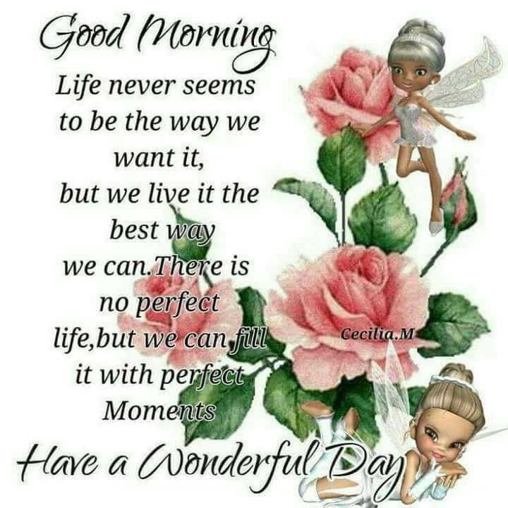 Good morning greetings daily greetings pinterest blessings good morning greetings daily greetings pinterest blessings morning greetings quotes and mourning quotes m4hsunfo