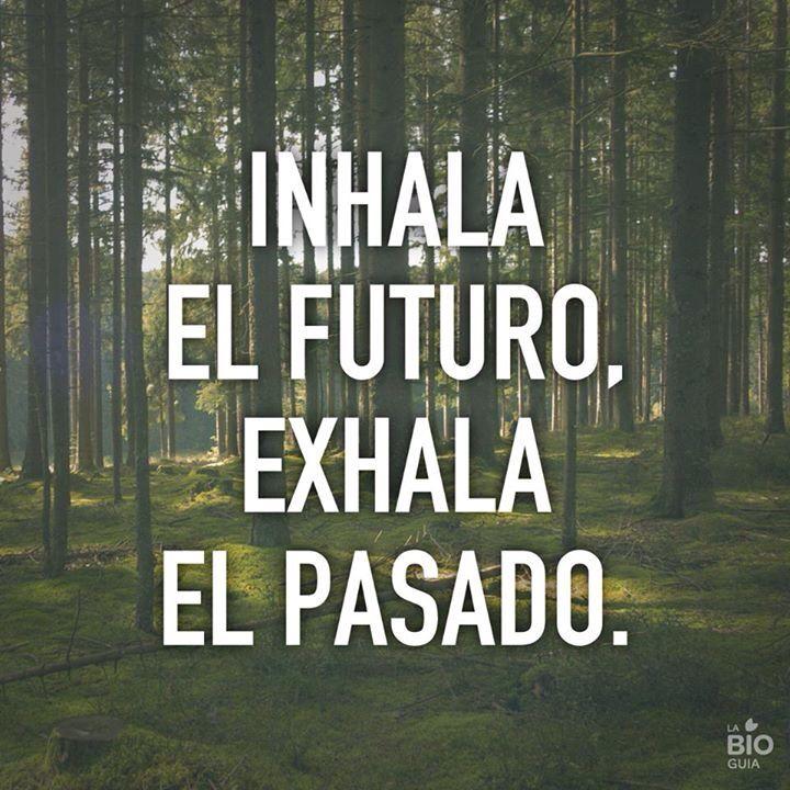 El futuro-el pasado