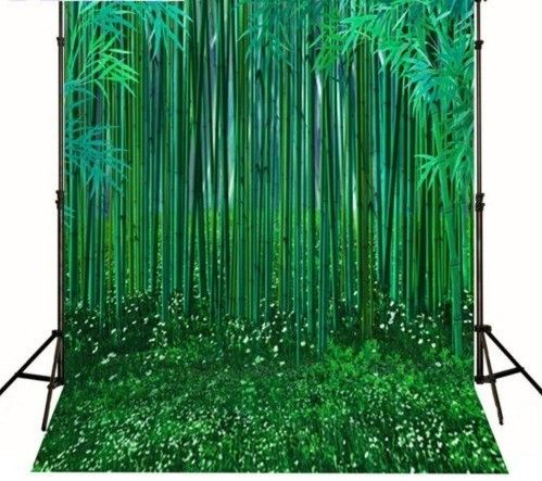 >> Click to Buy << Vinyl cloth Computer printed bamboo backdrop green bamboo grass  Photography Backgrounds #Affiliate