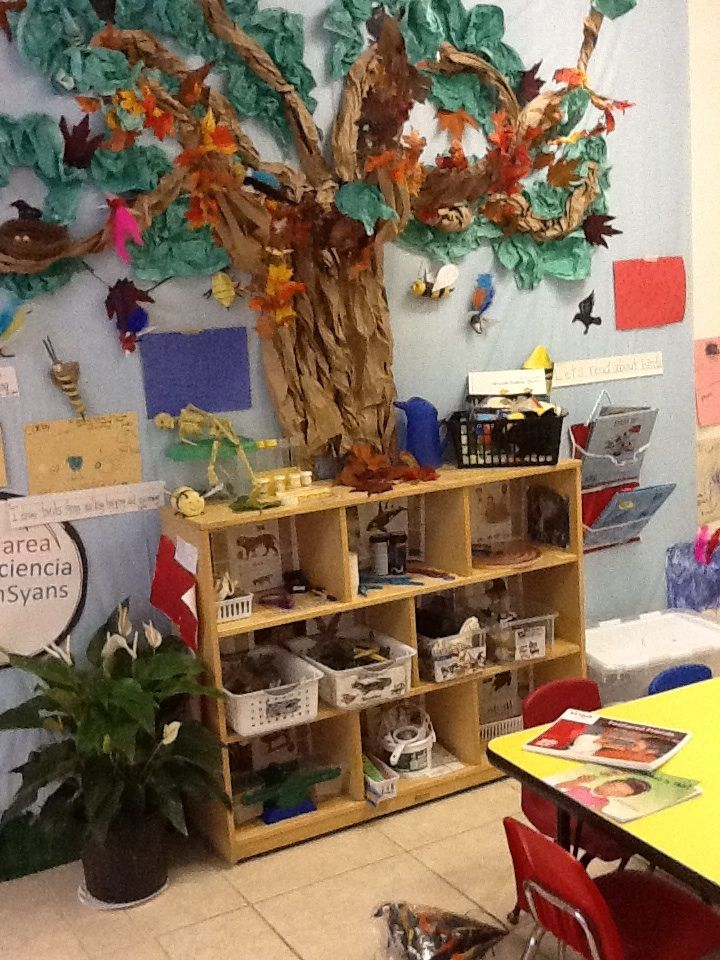 Science centers for preschoolers science area ideas for for The home ideas centre