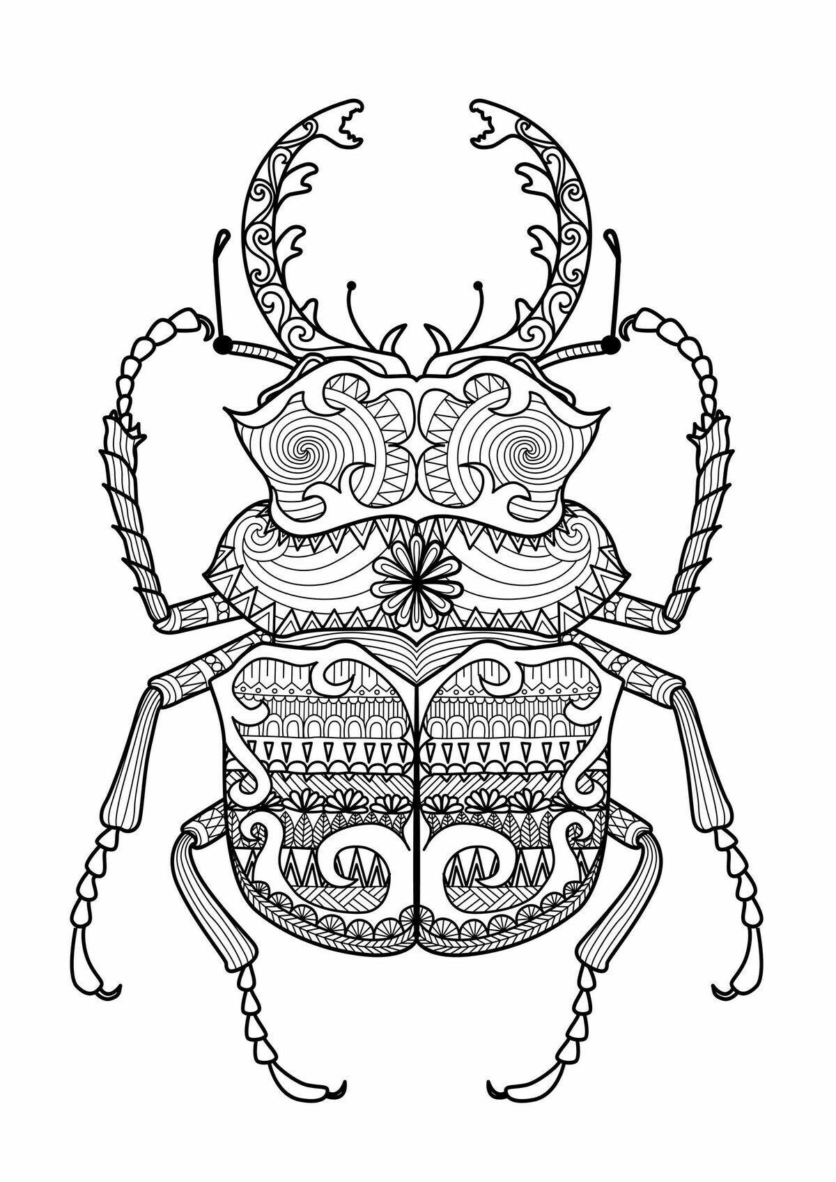 insekten malvorlagen quest | aiquruguay