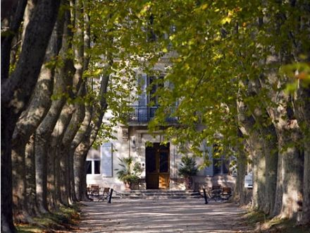 Chateau Des Alpilles Saint Remy De Provence Bouches Du Rhone Duplicate Saint Remy De Provence Château Provence