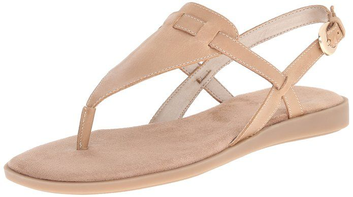 7c22a5c859e4 Amazon.com  Aerosoles Women s Coastline Gladiator Sandal  Clothing Flat  Gladiator Sandals
