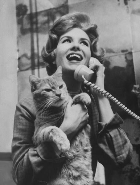 0 Julia Meade at the phone holding her cat at home