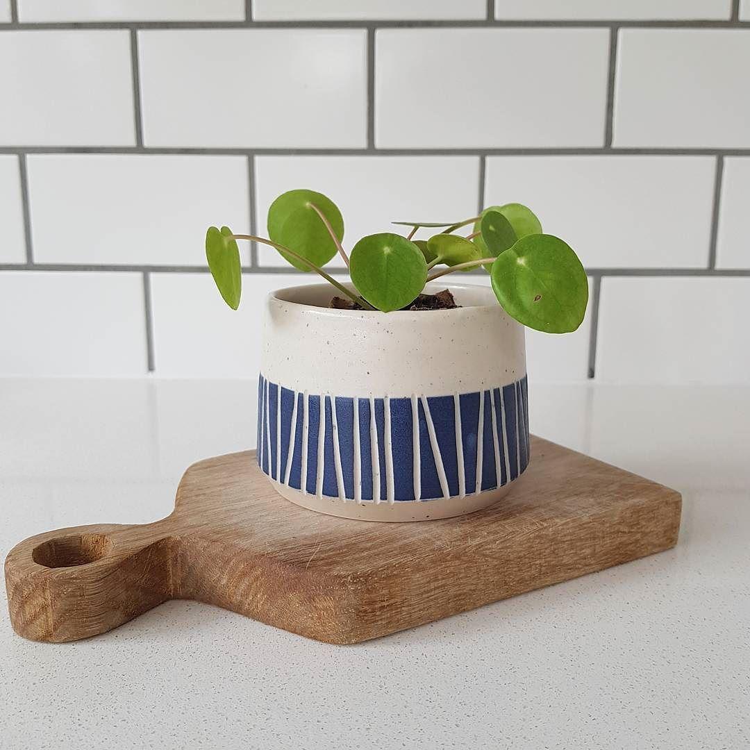 I Ve Just Listed Ten Of These Mini Planters In My Web Shop A Nice Little Christmas Gift Perhaps Maybe Macetas De Ceramica Ideas De Maceta Macetas De Cemento