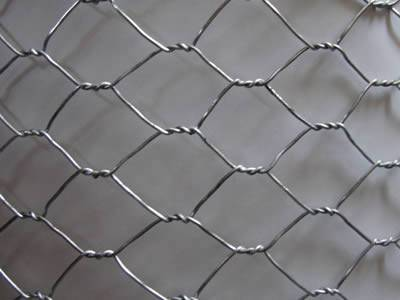 Hexagonal Wire Mesh Fence Also Called Hexagonal Wire Netting Or Chicken Wire Mesh Is Made From Stainless Steel Or H Wire Netting Chicken Wire Wire Mesh Fence