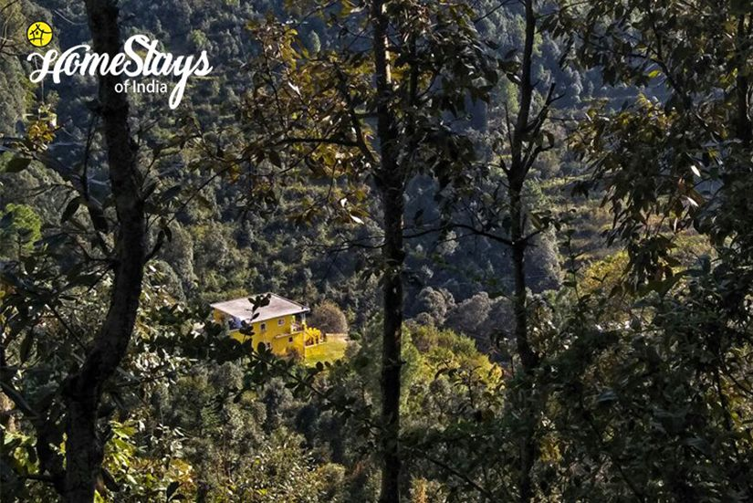 Mukteshwar Homestay in 2020 Uttarakhand, Walking in