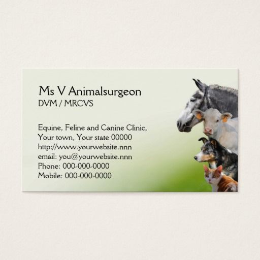 Animal Vet Appointment Zazzle Com Pet Vet Vets Animals
