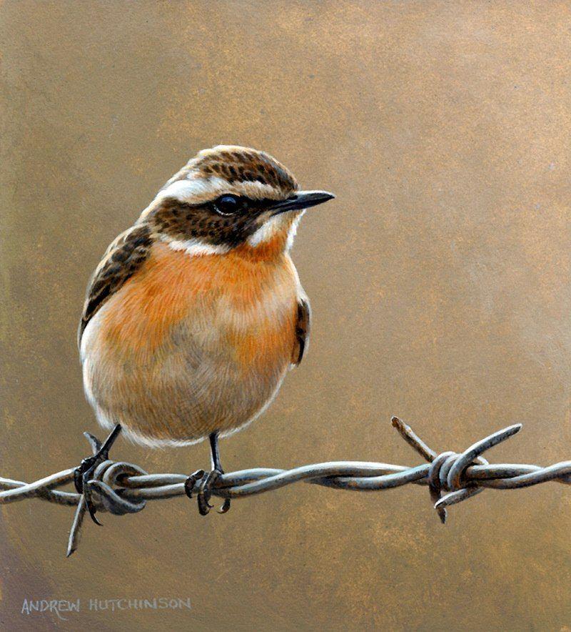 Декор плюс декупаж | Нарисовать птицу, Рисунок птиц ...