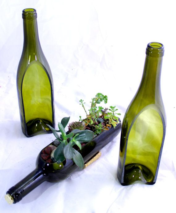 Wine bottle garden succulent planter build your own by for How to cut glass bottles lengthwise