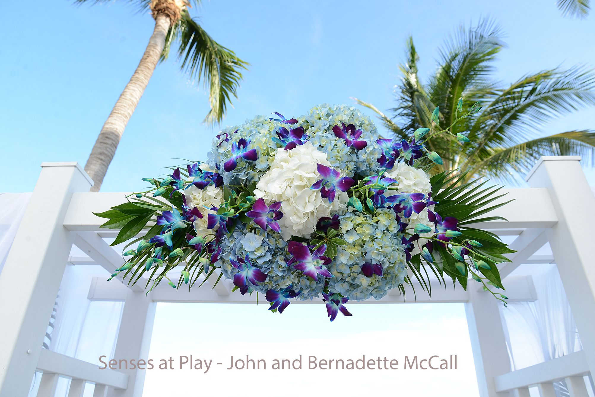 Blue hydrangea and orchid arch floral by love in bloom florist key