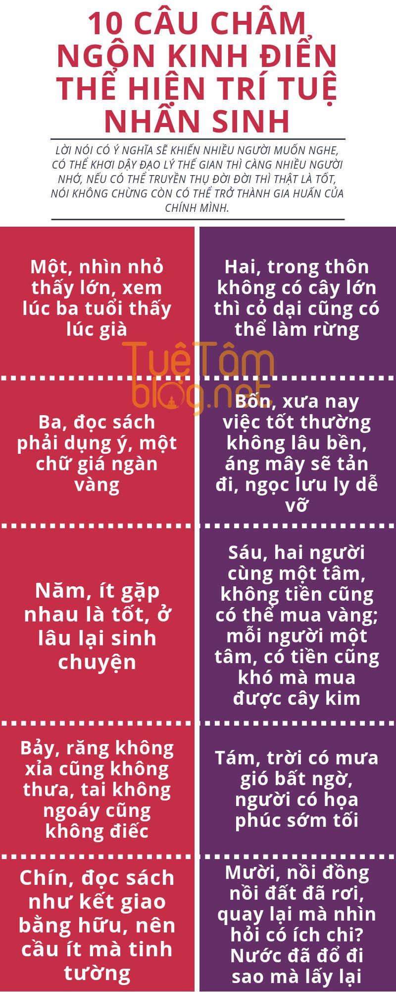 10 Cau Cham Ngon Kinh điển Thể Hiện Tri Tuệ Nhan Sinh Infographic Inspiration Lifestyle Cham Ngon Lời Khuyen Cham Ngon Về Cuộc Sống