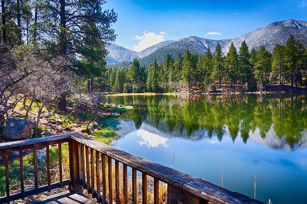 pine valley utah landscape | Pine valley utah, Pine valley ...