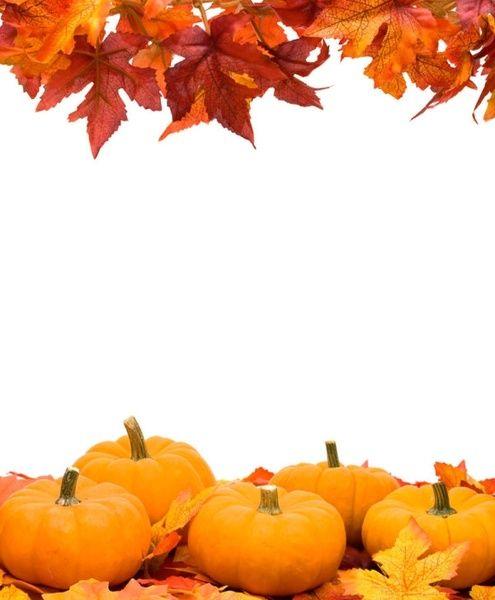 autumn leaves pumpkin frame hd Pumpkin pictures, Pumpkin