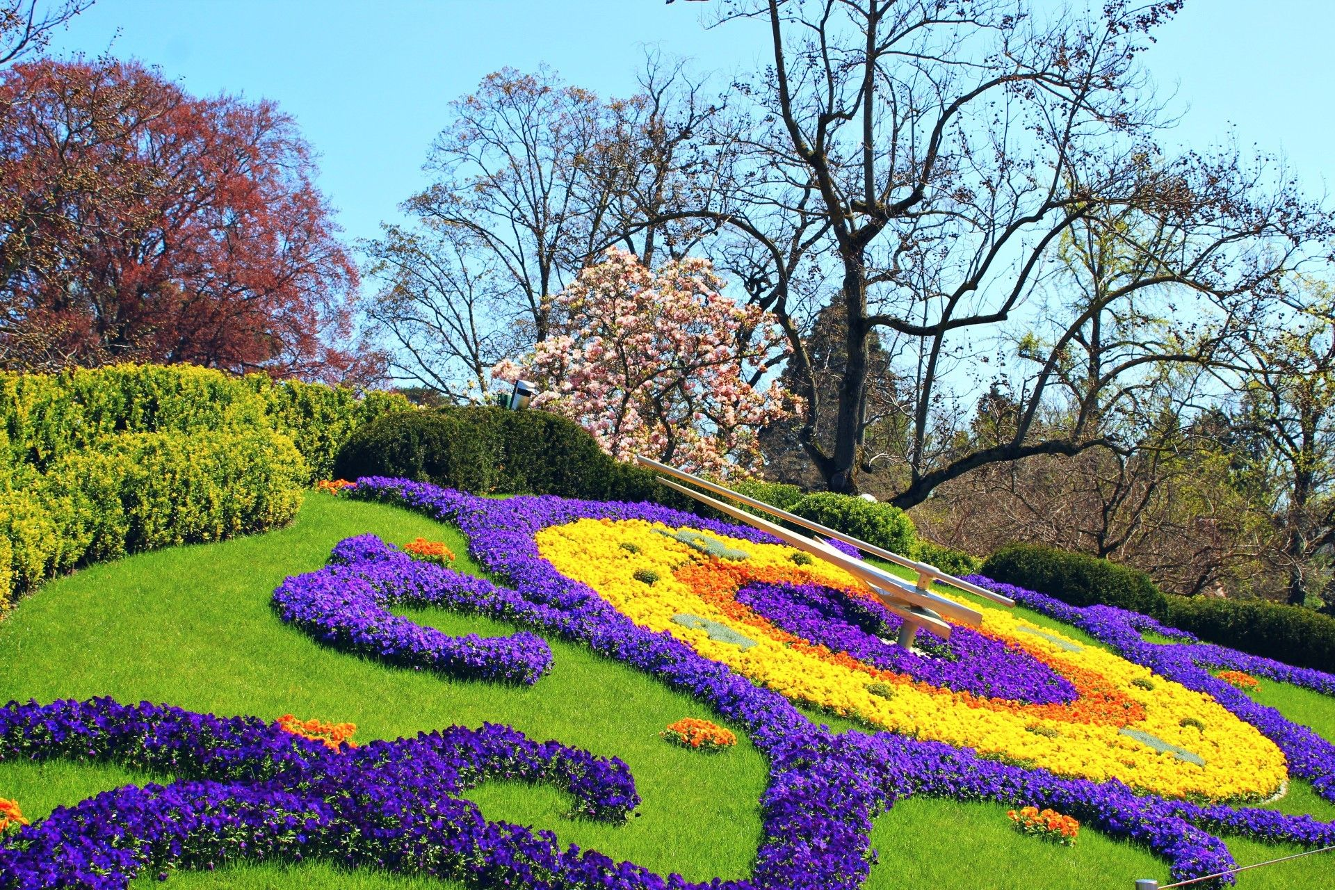 L Horloge Fleurie Jardin Anglais Geneve Jardin Anglais Horloge Fleurie Jardins