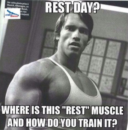 Image result for weights need rest
