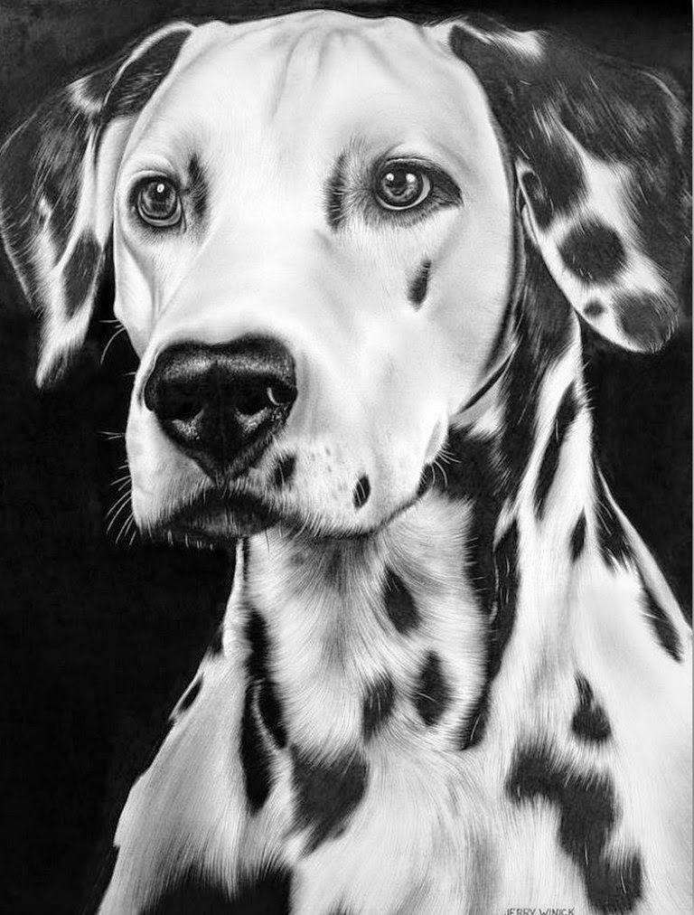 10 Lindos Dibujos A Lapiz De Perros | Imagenes de Perros | Dibujos a ...