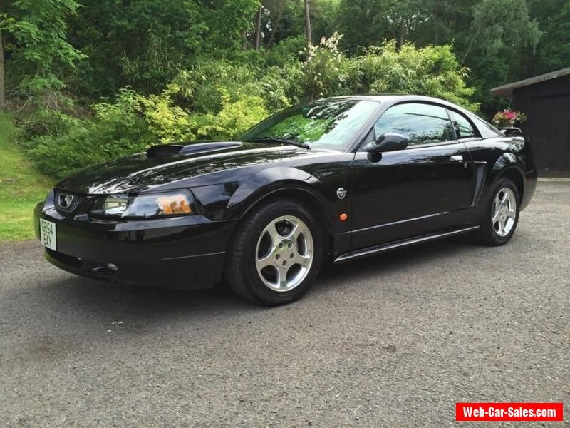 2004 Ford Mustang 40th Anniversary Edition 3 9v6 Ford Mustang Forsale Unitedkingdom 2004 Ford Mustang Ford Mustang Mustang