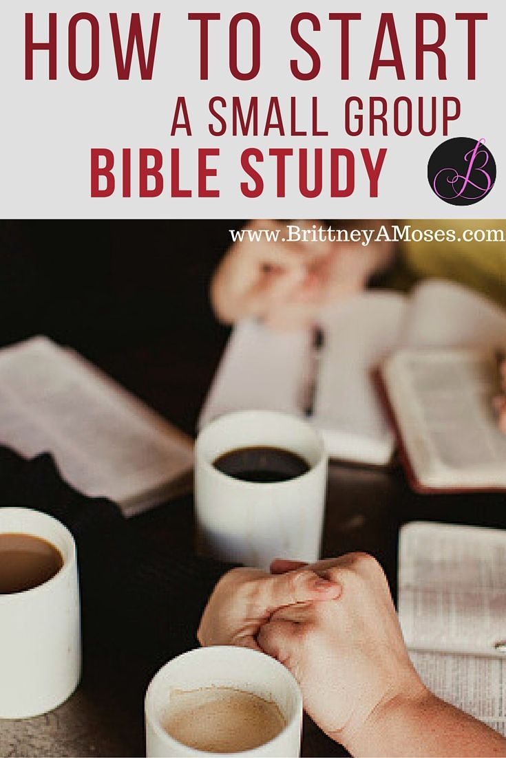 how to start a small group bible study | bible study | pinterest