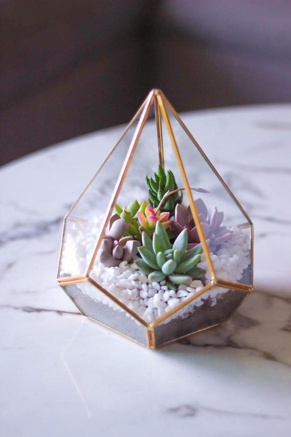Photo of Gold Geometric Terrarium- Diamond Shaped made with Real Succulents