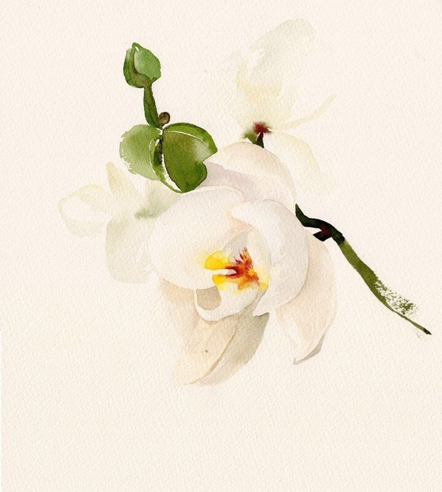 Watercolorist Tyhsu Co Uk Waterblog Akvarel