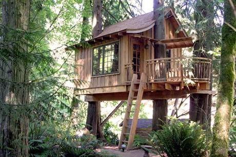 Imagen de    m1paperblog i 250 2503768 casas-rusticas - casas en arboles