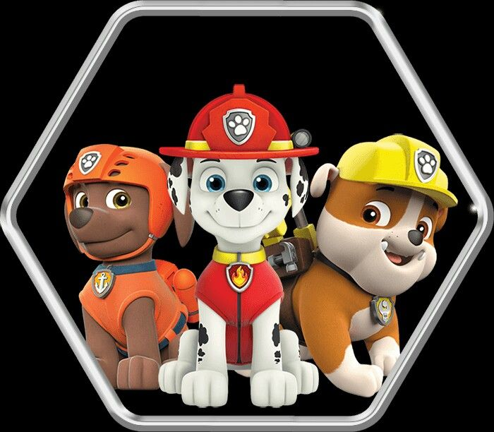 Pin By Abigail Anderson On Paw Patrol Paw Patrol Paw Patrol Characters Zuma Paw Patrol