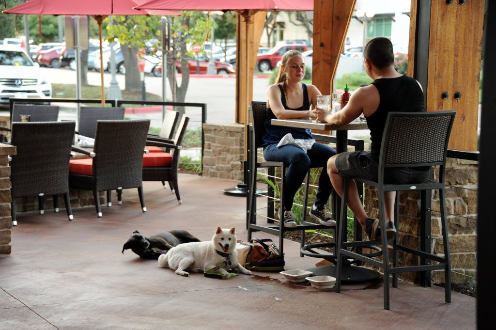 lazy dog restaurant - one of the many dog-friendly places in dallas