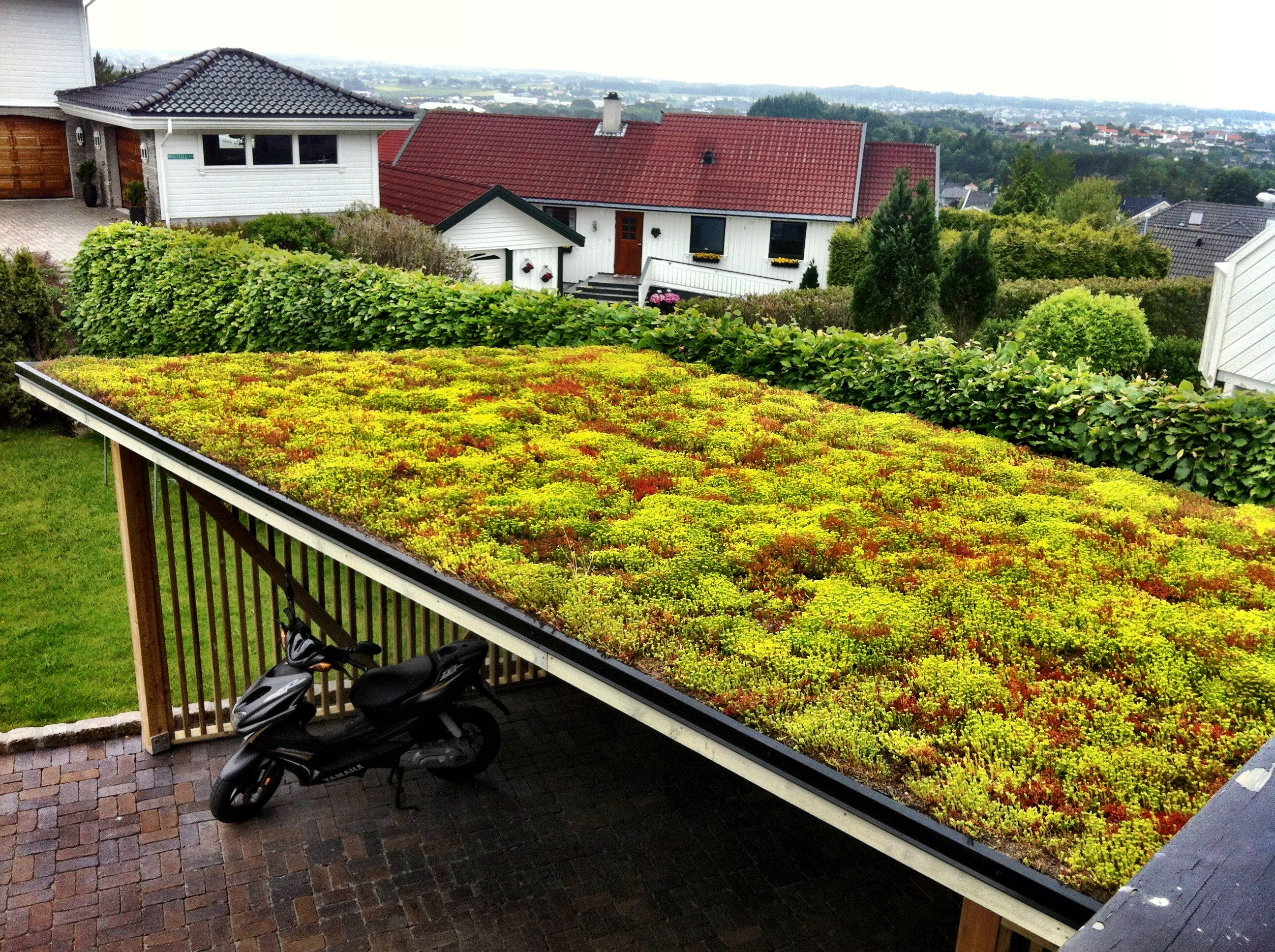 sedum roof garden work by komplett utemilj pinterest. Black Bedroom Furniture Sets. Home Design Ideas