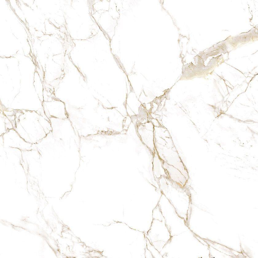 Calcutta Gold Marble Sample Marbletexture Calcutta Gold Marble Sample Calcutta Gold Marble Calcutta Gold Calacatta Gold Marble