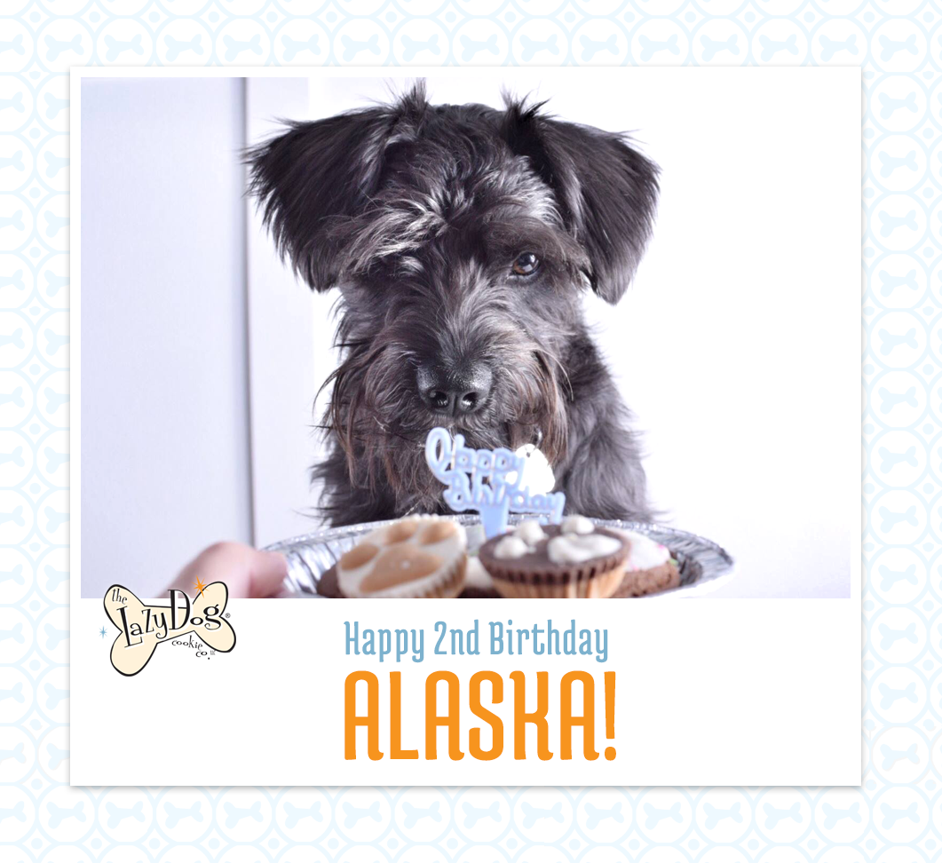 Happy 2nd Birthday Alaska!