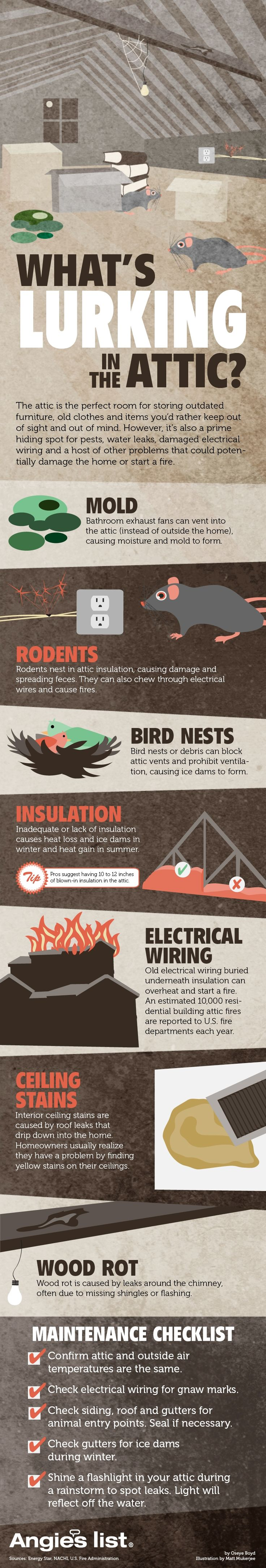 Mice Rats Electrical Fires Blocked Ventilation Faulty Insulation Mold Rot Problems Hiding In The Attic Home Maintenance Attic Wood Furniture Diy