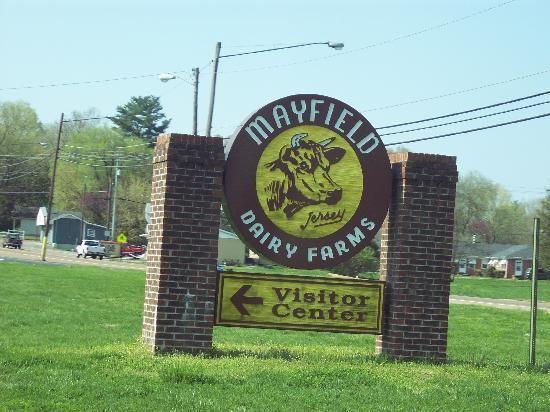 Hmm Maybe Mayfield Dairy Dairy Farms Farm Tour