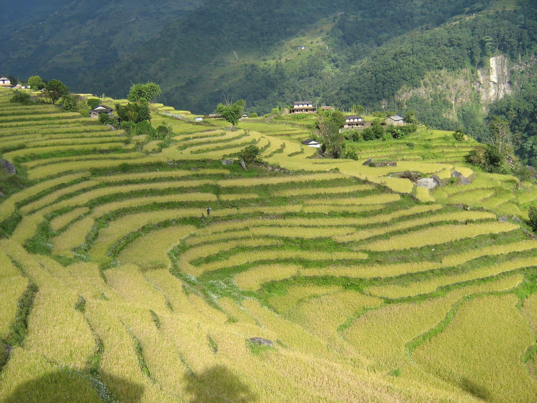 trekking companies trekking in nepal nepal trekking permit