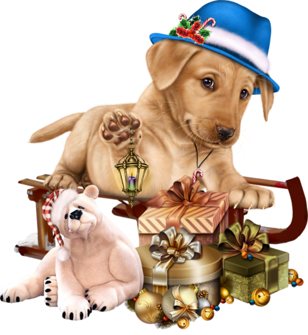 Chiens Dog Puppies Wallpapers Dessin Honden Dieren