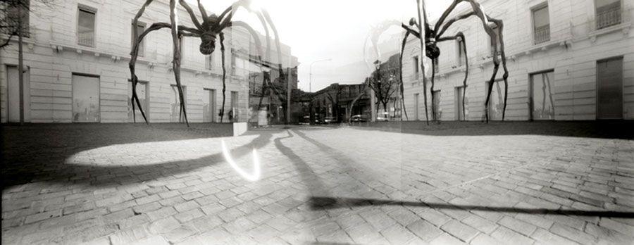Mayo. MAMAN, de Louise Bourgeois, Buenos Aires, Argentina. Fotografías de Silvia González, realizadas con el apoyo del Programa de Residencias Artísticas del Fonca, 2011.