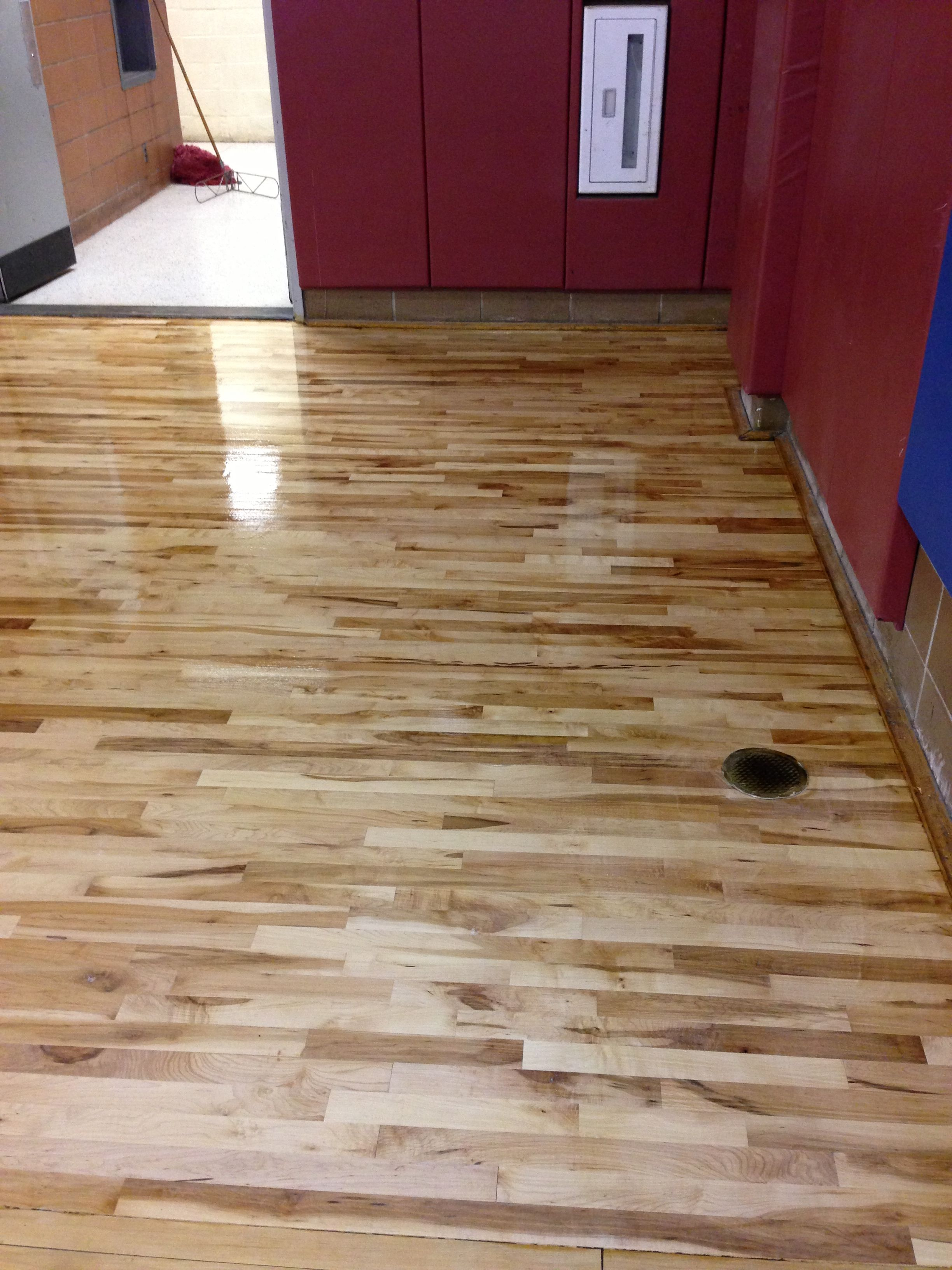 Maple Floor With Oil Base Polly Maple Floors Flooring Hardwood