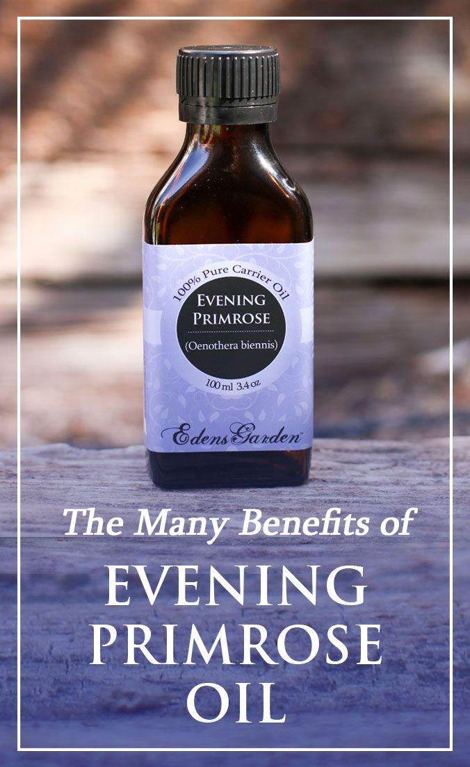 Evening Primrose Evening primrose oil, Primrose oil
