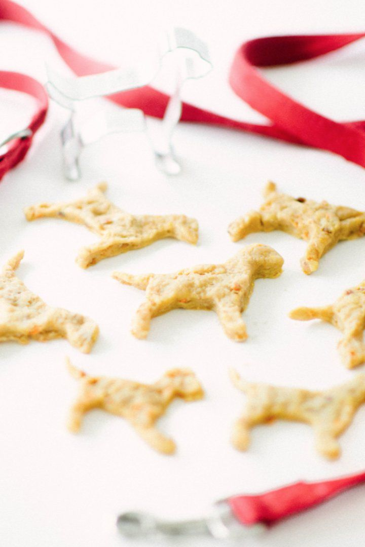 Carrot and apple dog biscuit recipe recipe dog biscuit