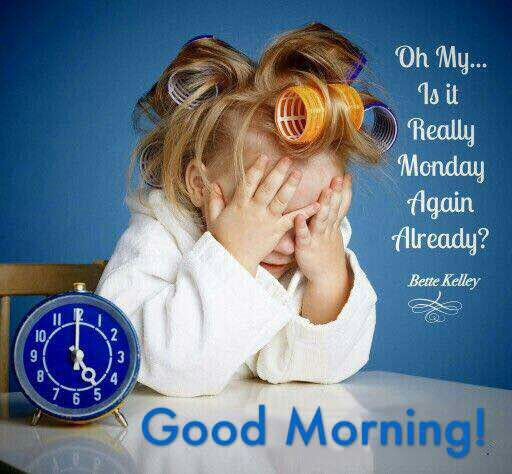 Good Morning My Friend Hope You Have A Magnificent Monday Monday Humor Quotes Morning Quotes Funny Monday Morning Quotes