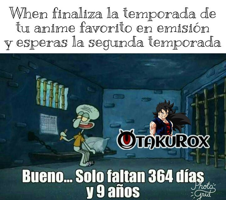 Todos Estamos Asi En Estos Dias Yamcha Sama Anime Meme En Espanol Memes Divertidos Memes Memes Graciosos