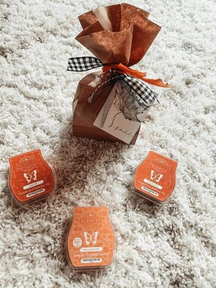 Scentsy Fall/Winter wax bundle in 2020 Scentsy, Melting