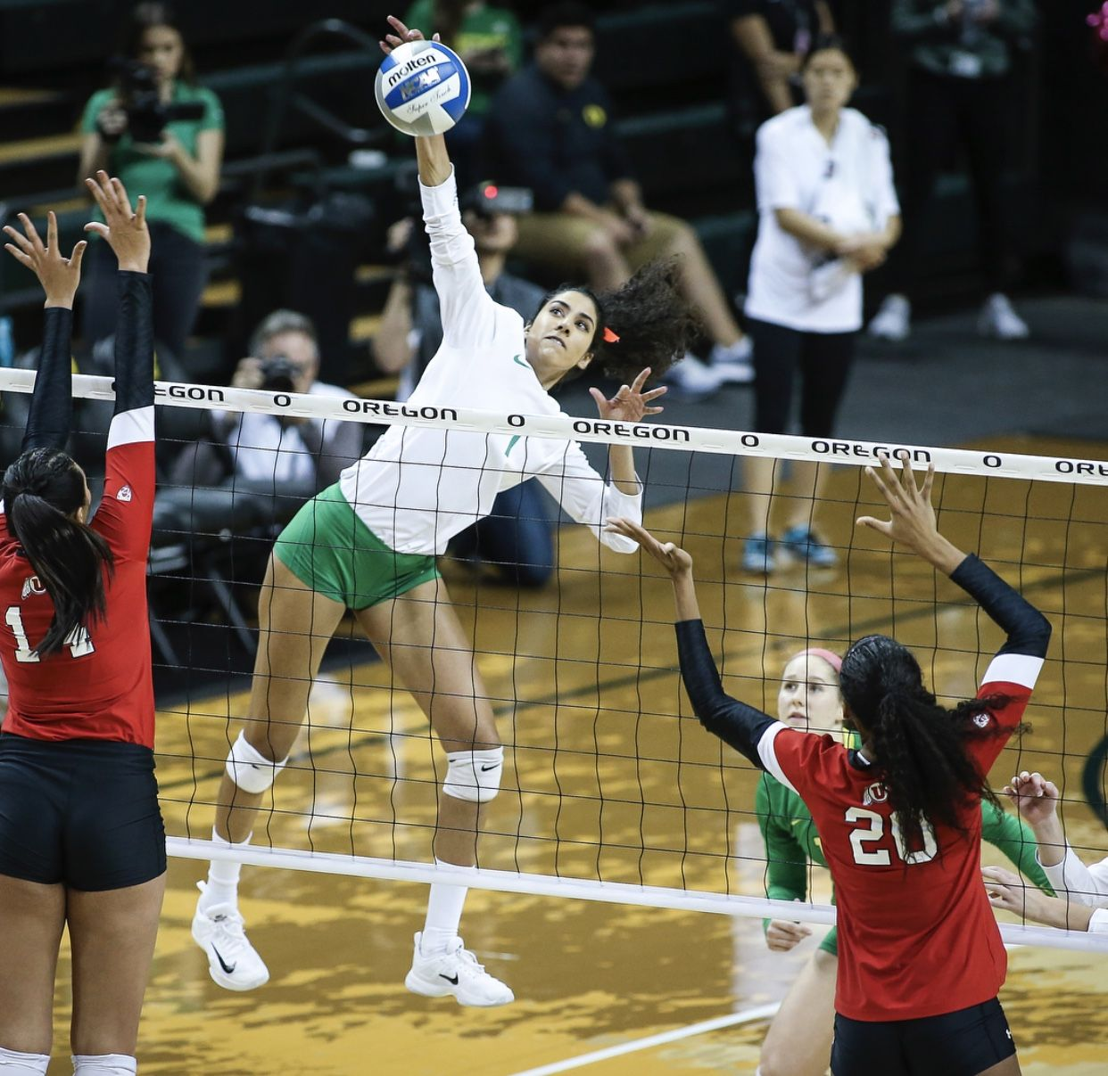 Pin By Abby Trauman On Oregon Ducks Volleyball Female Volleyball Players Volleyball Photos Volleyball Players