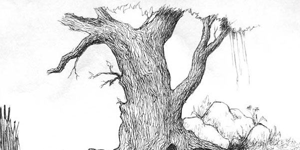 Easy pencil drawings of nature human nature